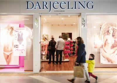 Darjeeling-1280-2
