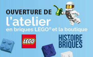 vignette-site-web-348x215-LEGO